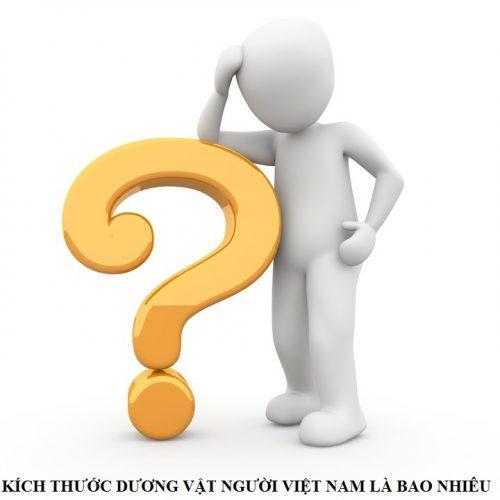 Kích thước dương vật người Việt Nam là bao nhiêu?