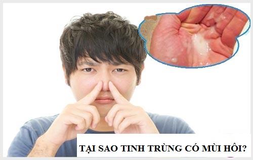 nguyên nhân tinh trùng có mùi hôi